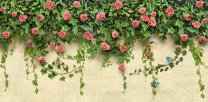 Цветы и зелень на стене