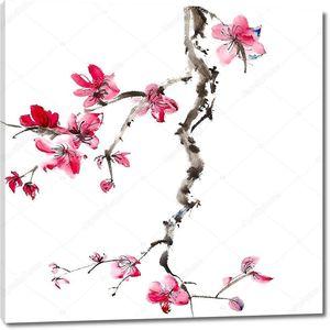 Сливы в цвету