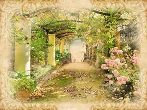 Цветочный туннель в парке