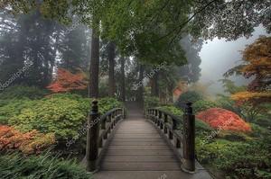 Мост в японском саду осенью