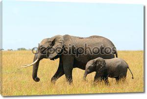 африканские слоны мать и ребенок