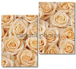 Бесшовный узор из кремовых роз