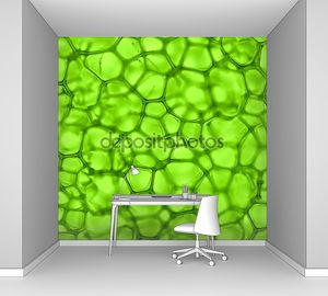 Фон ячейки зеленый