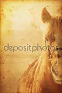 фон лошади