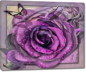 Крупная роза в каплях воды