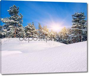 Зимний пейзаж. Состав природы.