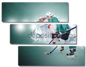 Хоккеисты