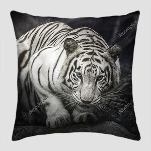 Белый тигр на скале