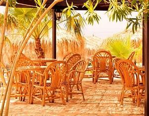 Кафе на курорте