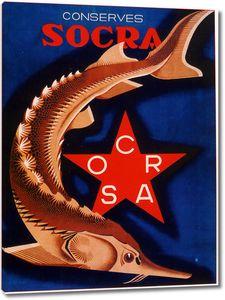 Осетр. Socra