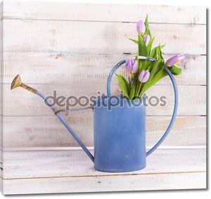Лейка с тюльпанами