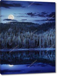 Озеро рядом с горой в сосновом лесу в ночное время