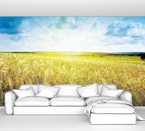 Спелой пшеницы пейзаж против голубого неба