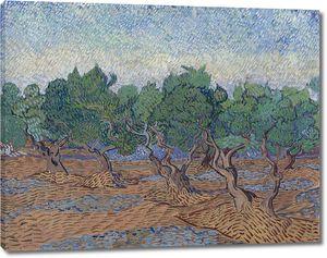 Ван Гог. Оливковая роща