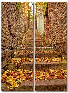 Узкая улица усыпанная листьями