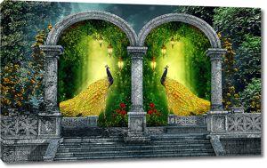 Павлины в арках