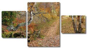 Лес в красно-желтой листве