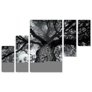 Искать в дерево в лесу туман