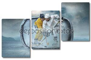 Игроки хоккея на льду