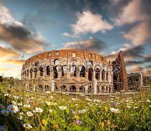 Колизей с весенними цветами в Риме, Италии