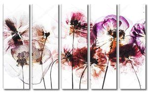 Сухие цветы мака