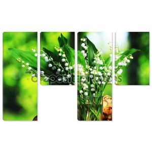 лилия цветов долины