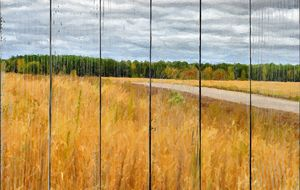 Дорога через осеннее поле