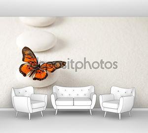 фон с камнями и бабочка