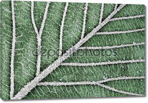 Аннотация листья искусство
