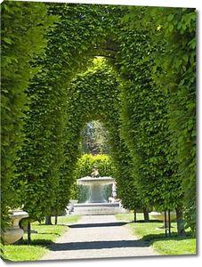 Открытый парк арки над проложили путь в Солнечный день