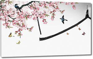 Вишня в цвету с птицами