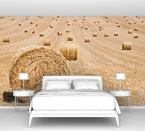тюков сена на поле собранного, ждут, чтобы быть собраны