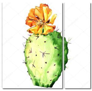 Кактус опунции с желтым цветком