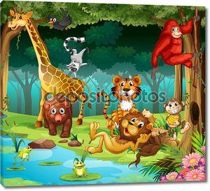 Животные и леса