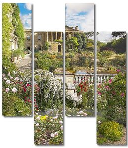 Большое разнообразие цветов и растений в саду
