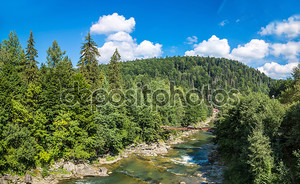 Горная река Прут в Яремче