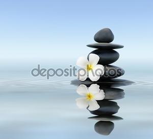 Zen камни с frangipani