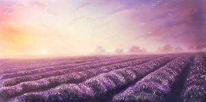 Картина маслом поля лаванды