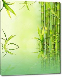Бамбук  отражение на поверхности воды