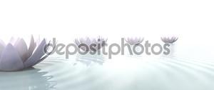 Цветы лотоса в Zen нарисовать путь на воде