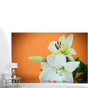 Белые лилии на оранжевом фоне