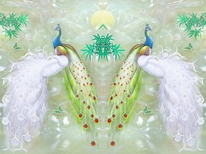 Мраморный фон, зеркальные белые и красочные павлины