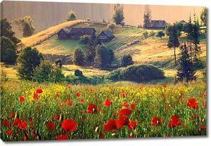 Старый дом и дикие цветы