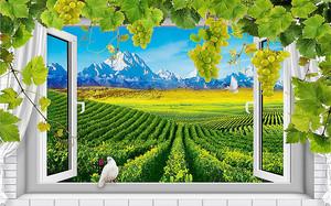 Вид из окна на виноградники