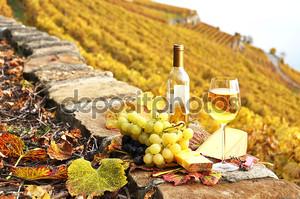 бокалы и бутылку на террасе виноградника в регионе Лаво,