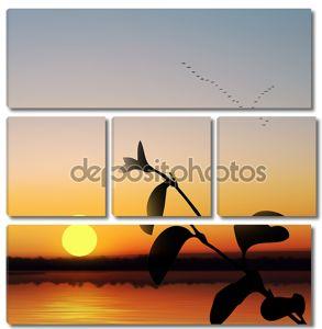 Летающие птицы над рекой