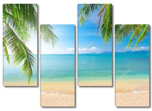 Palm и тропический пляж