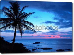 Силуэты пальм на закате тропический пляж