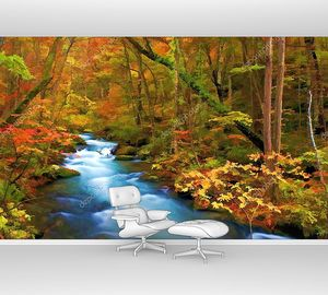 Осенний цвет реки Ойрасэ, Япония