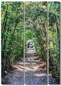 Сады Боболи Флоренция